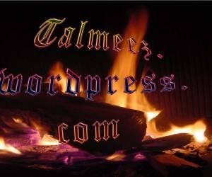 Talmeez-Banner-Facebook
