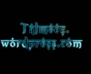 Talmeez-Professional-Style